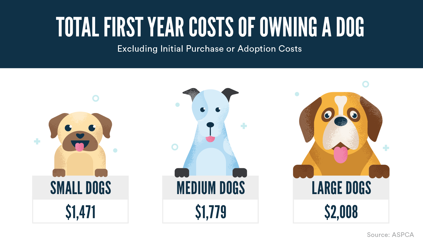 Cost Of Owning A Dog What To Know Before Buying Or Adopting Wikibuy